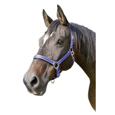 Kerbl Halfter Mustang 2fach Verstellb. Blau
