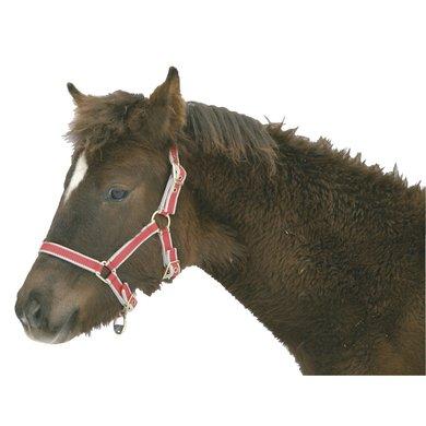 Kerbl Licol pour Poulain Eurohorse Hors Rouge