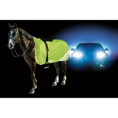 Kerbl Reflective Safety Blanket