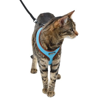 Kerbl Cat Harness Activ Blue 120cm