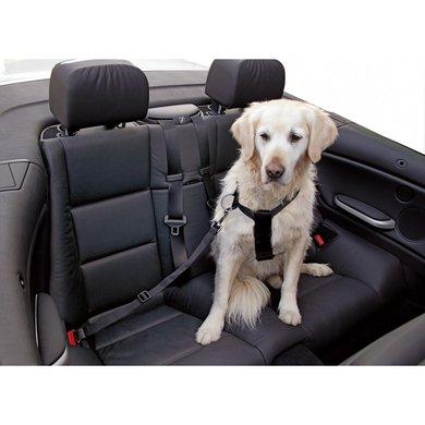 Kerbl Autogordel voor Hond Verstelbaar Zwart 30-70cm S