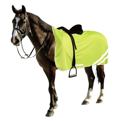 RugBe by Covalliero Reflective Safety Blanket