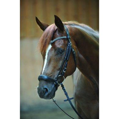 Kavalkade Hoofdstel Isabella hann Neusriem Zwart Pony