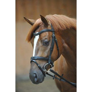 Kavalkade Hoofdstel Estella englCombi Neusriem Zwart Pony