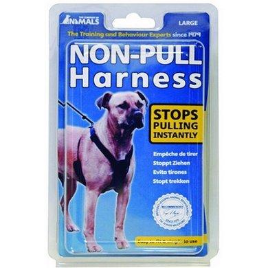 Company of Animals Anti Ziehgeschirr Non Pull Harness COA Hund