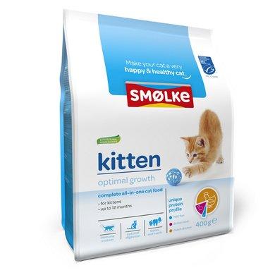 Smolke Kat Kitten