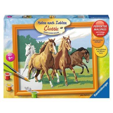 Schilder Puzzel Wilde Paarden