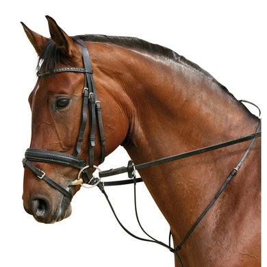 Pfiff Martingale Brown