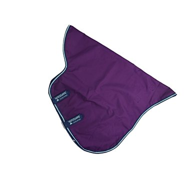 Amigo Hood Purple/Navy