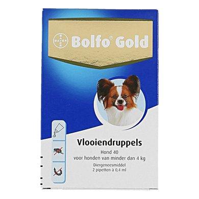 Bolfo Gold Hond 40 2 Pipetten