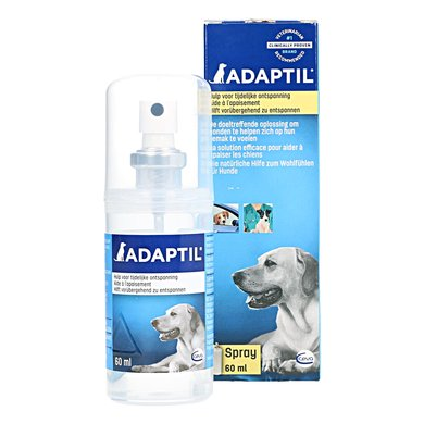 Best Dog Pheromones Products