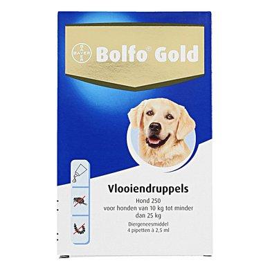 Bolfo Gold Hond 250 4 Pipetten