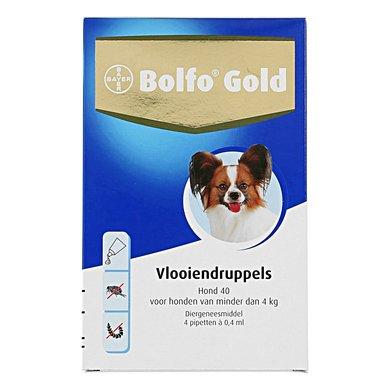 Bolfo Gold Hond 40 4 Pipetten
