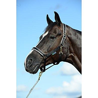 Bucas Foal Halter Dublin Black/Silver Veulen