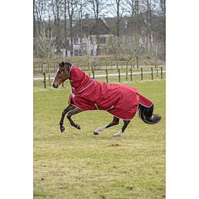 Bucas Irish Combi Neck Ruby