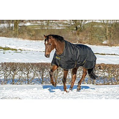 Bucas Irish Turnout Light Highneck Black-Gold