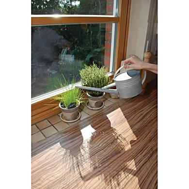 Esschert gie kanne f r zimmerpflanzen for Zimmerpflanzen versand