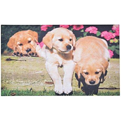 Esschert Deurmat puppy 76x45,5x0,4cm