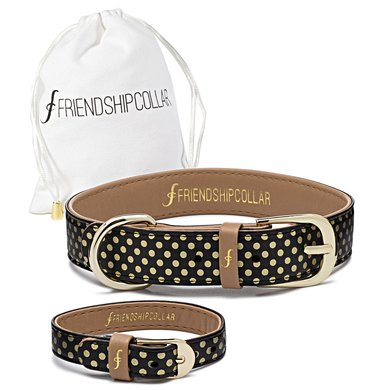 FriendshipCollar The Dotty About You S