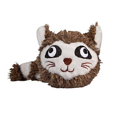 FabDog Raccoon Faball