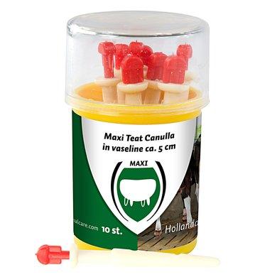 Maxi Teat Canule 5cm