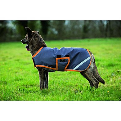 Amigo Dog Rug 600D 100g Excalibur Orange