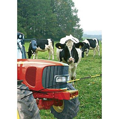 Agradi Ersatzstab für Viehschranke (stückweise ) 2,5m