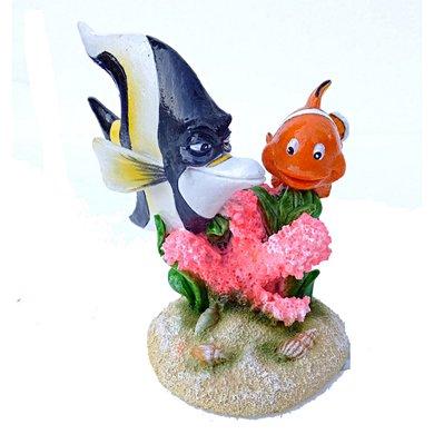 Aqua D Ella Clown Fish