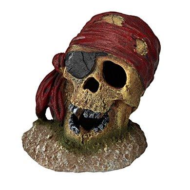 Aqua D Ella Pirate Skull Eye-patch 7x7x8cm