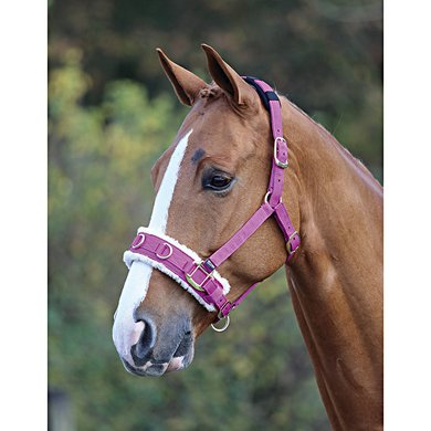 Shires Kaptoom Cavesson Fleece Onderlegd Raspberry