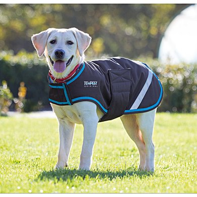 shires hundejacke wasserdicht charcoal turquoise xxl. Black Bedroom Furniture Sets. Home Design Ideas