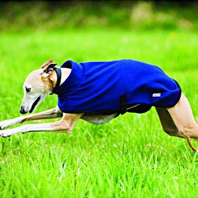 Amigo Fleece Dog Rug Navy-Blue