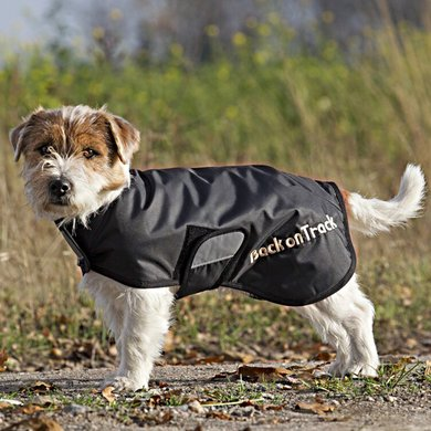 Back on Track Standaard deken Hugo Zwart