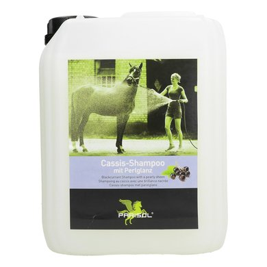 Parisol Shampoo 5000 ml