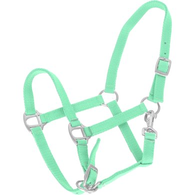 Agradi Halster Classic Mint Groen Pony