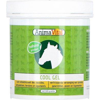 Animavital Cool Gel 500gr