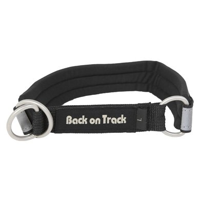 Back on Track Hondenhalsband Black / Silver