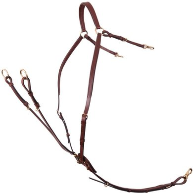 BR Front Harness Rayleigh with Saddle Buckles Tobacco/Koper