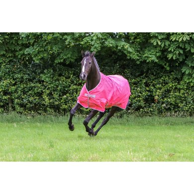 Bucas Freedom Turnout Light 0g Paradise Pink