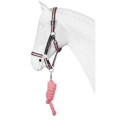 Red Horse Halfter Wild & Free Set Pechschwarz Full