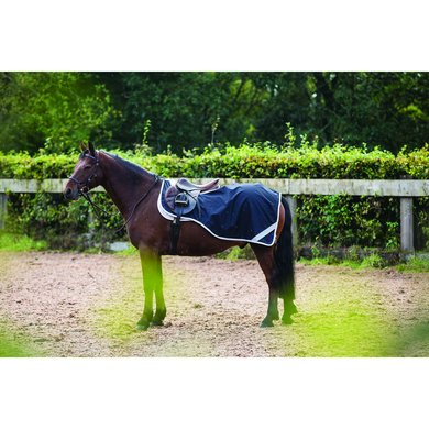Amigo Pony Competition Sheet French Navy