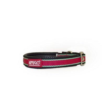 Amigo Hondenhalsband Red/White/Green/Black