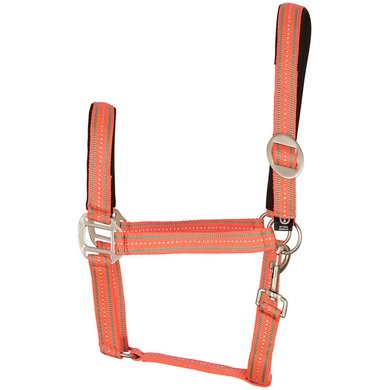 Imperial Riding Halster Luxury Neopreen Diva Pink Cob