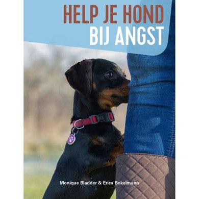 Help je hond bij angst