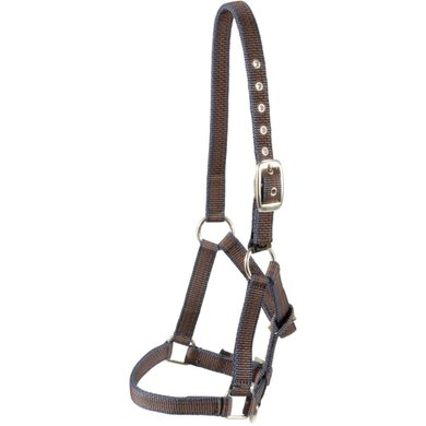 Pfiff Halter For Foals Striped Blue Brown