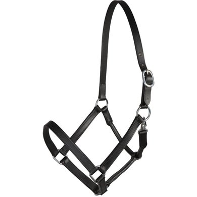 Pfiff Basicline Leather Halter Black Full