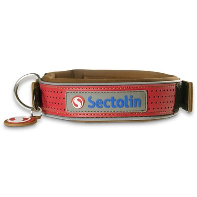 Sectolin Halsband Outdoor Bruin/Rood