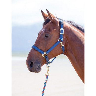 Shires Headcollar Topaz Nylon Navy