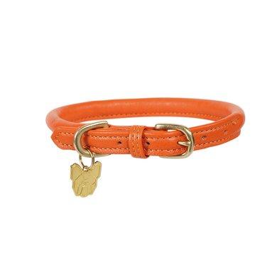Digby & Fox by Shires Halsband Rolled Leder Orange
