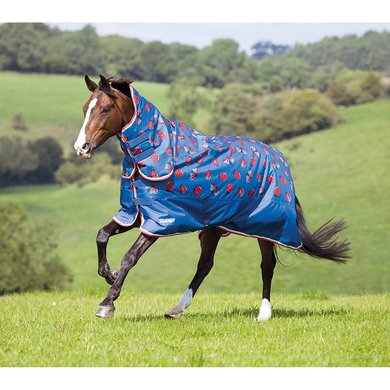 Tempest by Shires Outdoor Combo 200 Ladybird Print 150/198